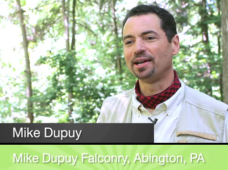 Mike Dupuy Falconry
